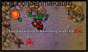 Thon Starck Shielding level 88.